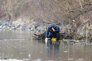 wetland-mitigation